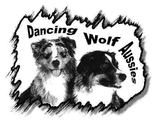 Dancing Wolf
